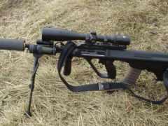 steyr, авг, guns