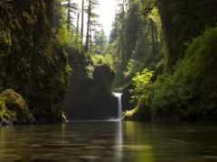 природа, водопад, summer