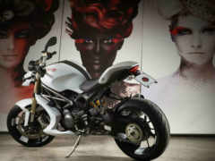 ducati, monster, evo