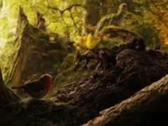 dragons, hoard, amber
