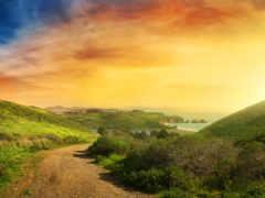 дорога, пейзажи, красивые