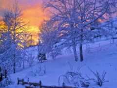 природа, landscape, снег