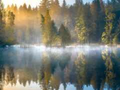 озеро, осень, туман