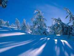 снег, blue, winter