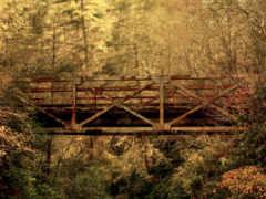 мост, ржавый, лесу