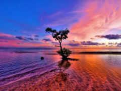 природа, красивая, море