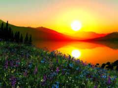природа, хороший, утро