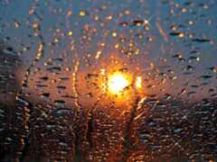 погода, territory, дождь