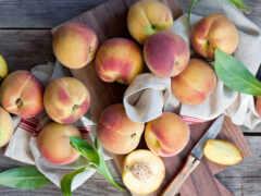 персик, абрикос