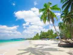 resort, пляж, море
