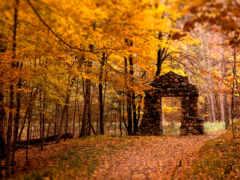 пейзажи -, природы, красивейшие