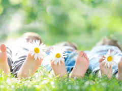 дети с ромашками на лужайке