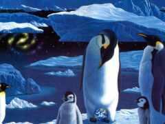 diamond, пингвин, william