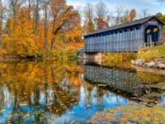осень, мост, природа
