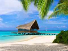 туры, мальдивах, maldives