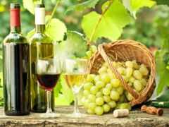 виноград, натюрморт, вино