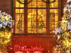 праздник, елка