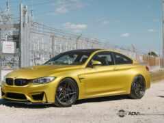 austin, yellow