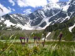 full, paisajes, природа
