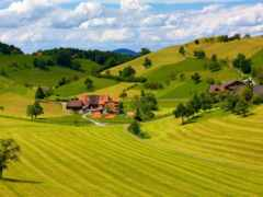 деревня, house, weed