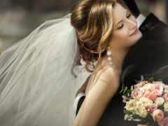 wed, knot, салон