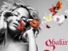 shakira, ul, flowers