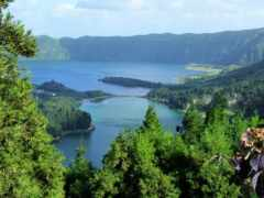остров, португалия, azorskii