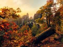 саксония, осень, germanii