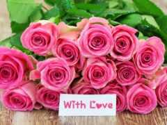 рождения, розы, днем