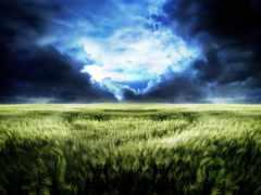 буря, поле, природа