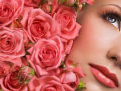 роз, лепестки, розы