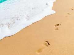 след, песок, footprint