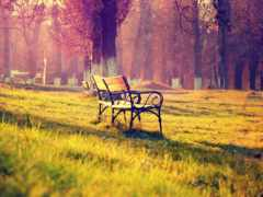 autumn, landscape Фон № 27513 разрешение 2560x1600