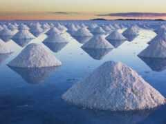 salt, uunit, funny