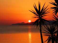 закат, palm, гора