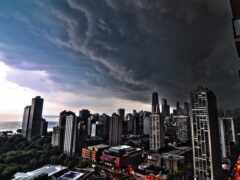 chicago, взгляд, powerful