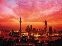 shanghai, небоскребы, ночь
