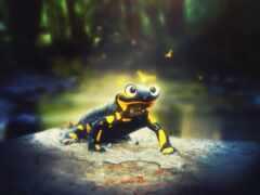 саламандра, ящер, animal