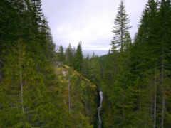 les, горы, речка Фон № 96583 разрешение 1920x1200