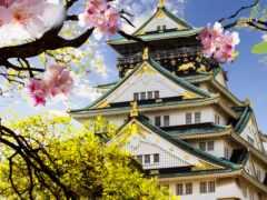 осака, japanese, фотообои