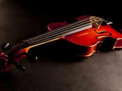 скрипка, инструмент, музы