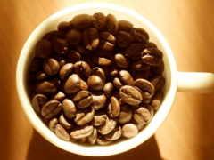 coffee, бесплатные, телефон