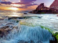 природа, темы, surf