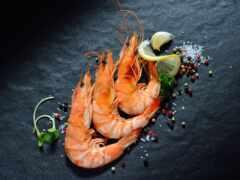 congelado, shrimp, pescado