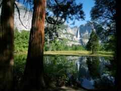 yosemite, national, park