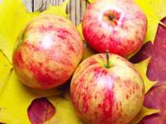 яблоки, листва, деревянной