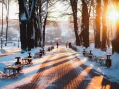 gorod, калуга, zima
