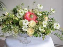цветы, букет, oir