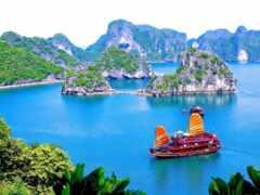 vietnam, отдых, rook