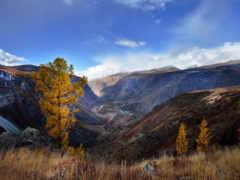 гора, алтай, осень